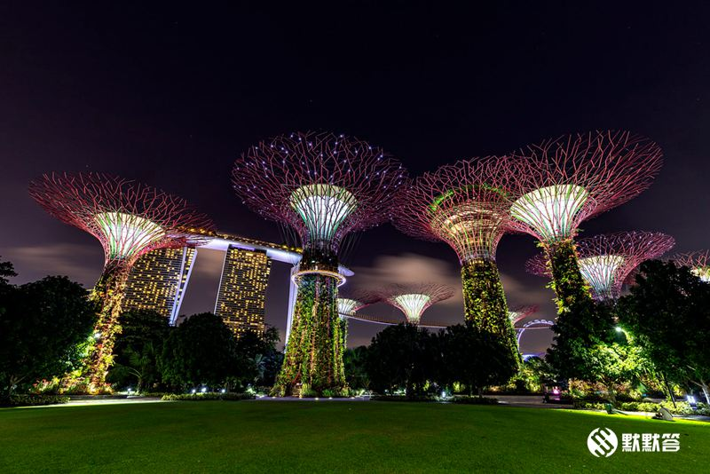 滨海湾花园「Gardens By The Bay」 (3)