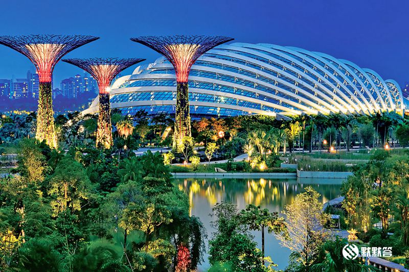 滨海湾花园「Gardens By The Bay」 (5)